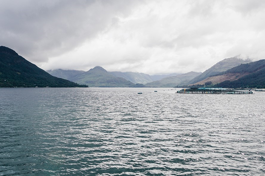 A Mowi fish farm location within the Scottish Highlands