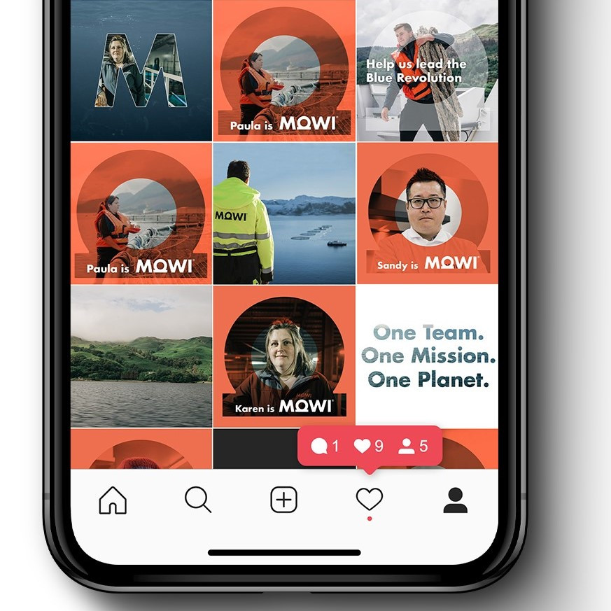 Mowi Instagram shown on a phone mockup, with the assets created by Denvir arranged in a grid